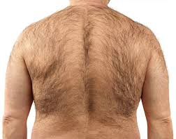 pubic hair styles per country hair removal the number of men who really manscape revealed