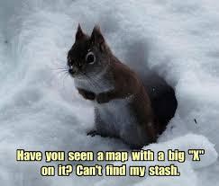 Squirrel Nuts Meme - i can has cheezburger nuts funny internet cats cat memes and