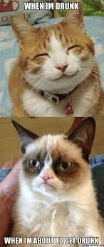 Drunk Cat Meme - when im drunk when im about to get drunk make a meme