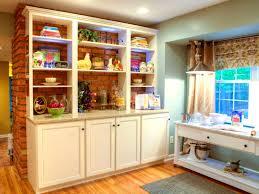kitchen wall stunning kitchen wall splashbacks splash backs