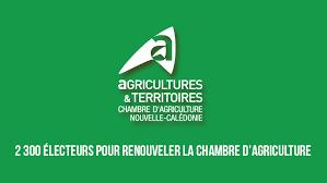 chambre d agriculture 2 300 électeurs pour renouveler la chambre d agriculture la dépêche nc