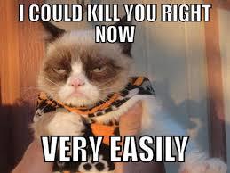 Mean Cat Memes - 10 of the funniest grumpy cat memes
