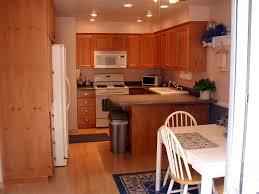 high end under cabinet lighting kitchen cabinet appliances kitchens maintenance cleaning high