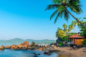 best honeymoon places in india in december top 10 list