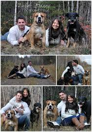 best 25 family pictures dog ideas on pinterest fall couple