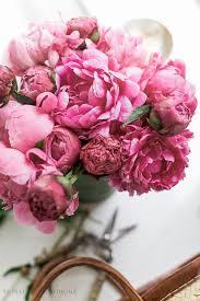 Gardening Tips For Summer - 174 best create garden images on pinterest garden ideas flower