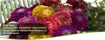 Flower Seeds Online - flower seeds online u2013 benary smile benary smile is an initiative