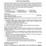 Best Sample Of Resume by Resume Template 79 Fascinating Free Examples Of Resumes Overview
