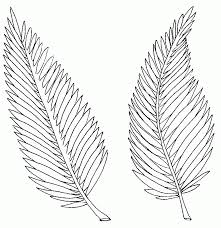 palm leaf coloring page and leaves pages with omeletta me