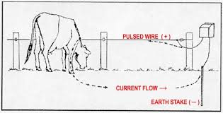 electric fence installation diagram fence gallery