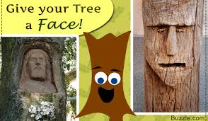 how to add a twist to your garden with amazing tree face art