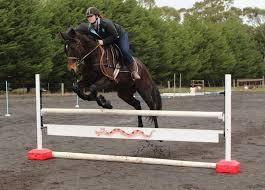 Ferrari Wonder Wing U2013 Horse Jump