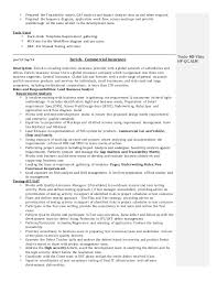 Credit Risk Business Analyst Resume Business Analyst Resume