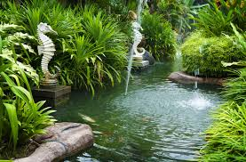 tropical waterfalls and ponds viewing gallery galleryhip com1600