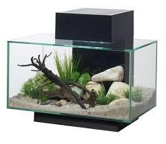 fluval edge 23 litre aquarium in black gardensite co uk