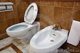 Bidets For Toilets Bathroom Bidet Simple Home Design Ideas Academiaeb Com