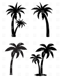 palm tropical tree set of black silhouettes royalty free vector