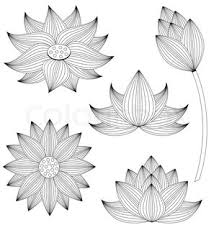 Lotus Flower Parts - banner with lotus stock vector colourbox
