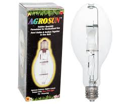 grow light bulbs high output lamps for indoor gardening