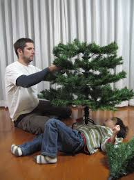 jeffrey friedl s our tree our