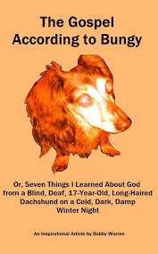 Living With A Blind Dog 12 Best Tips To Help Our Blind Dog Images On Pinterest Diabetic
