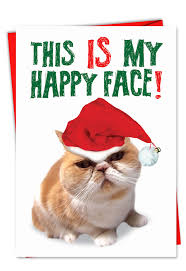 happy face funny christmas greeting card nobleworks