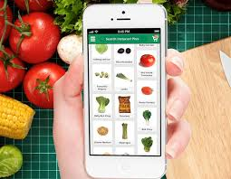 fruit delivery chicago instacart brings same day grocery delivery service to chicago