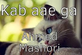 Mere Cat Meme - first world problems cat memes quickmeme