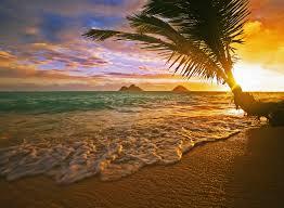 lanikai beach at sunrise hawaii wall mural lanikai beach at lanikai beach at sunrise hawaii wall mural photo wallpaper