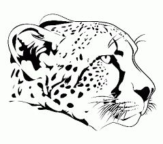 baby cheetah for coloring pages kids coloring