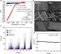 biofunctionalized conductive polymers enable efficient co2