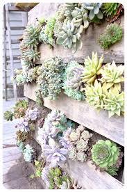 diy vertical wall garden succulents succulent garden wall