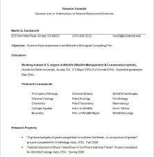 Format For Resume For Internship Download Internship Resume Examples Haadyaooverbayresort Com
