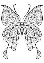 fantasy pages coloring butterfly color animal