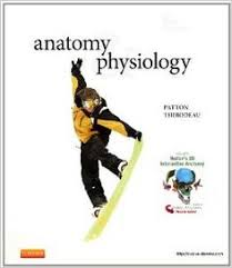 Saladin Anatomy And Physiology 6th Edition Online Anatomy And Physiology The Unity Of Form And Function 6th Edition