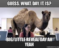 Little Meme - guess what day it is big little reveal day ah yeah hump day