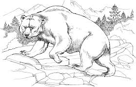 black bear coloring page american black bears coloring pages free