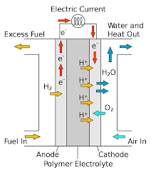 membraneless fuel cells wikipedia