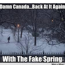 Canada Snow Meme - winter in spring aka fake spring aka springter springter canada