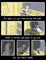 Moth Meme - be kind to moth album on imgur