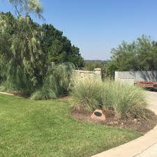 our lawns picture gallery grass works lawn care austin tx