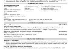 Ssis Developer Resume Sample by Clever Design Sql Developer Resume 3 Sql Ssis Ssrs Developer