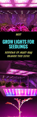best grow lights for vegetables best grow lights for seedlings reviews of must buy brands this 2018