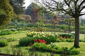 Image Flower Garden by Giverny Monet U0027s Flower Garden