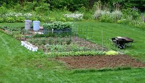 Garden Fertilizer Types - quick guide 10 natural fertilizers to improve crop production