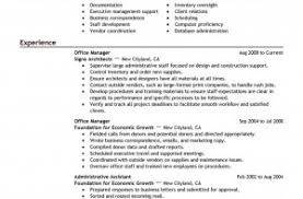 remarkable project manager resume summary on program cv