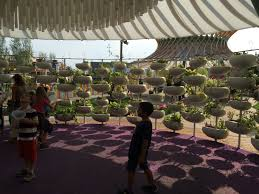 big ideas at world expo air cleaning concrete food that orders this plant wall delights in reggio children s park at milan expo 2015 photograph by mary