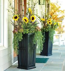 best 25 tall outdoor planters ideas on pinterest tall planters