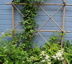 Garden Trellis Design by 27 Best Trellis Images On Pinterest Garden Trellis Bamboo