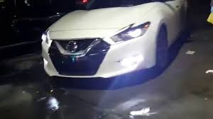 nissan maxima xenon headlights 2016 maxima sr w opt 7 flux beam cree led in the fog lights youtube